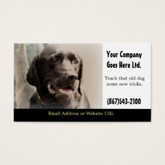 Dog Training Services Business Card