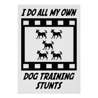 Dog Training Stunts Poster