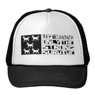 Dog Training Survive Mesh Hats