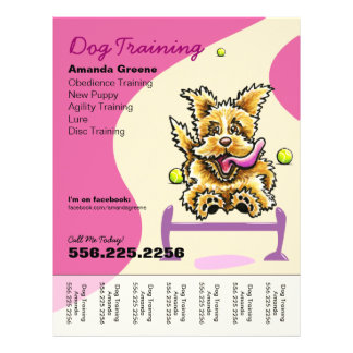 Dog Training Trainer Active Terrier Ad Tear Sheet