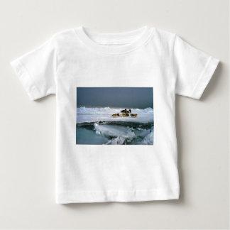 Dog travel on ice, Ellesmere Island, Northwest Ter T Shirts