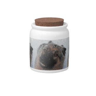 Dog Treat Jar German Shepherd In The Snow Smiling