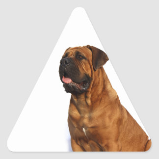 Dog Triangle Sticker