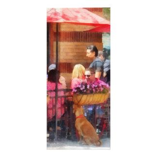 Dog Waiting at Cafe Hoboken NJ Rack Card