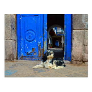 Dog Waiting in Front Of Blue Door, Cusco, Peru Postcard