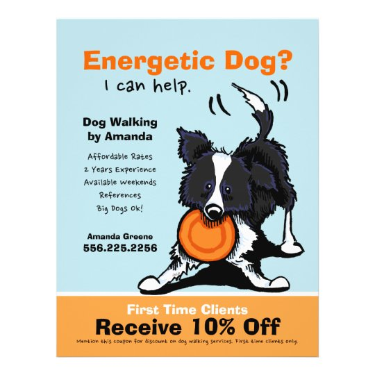 dog walker walking ad coupon border collie flyer