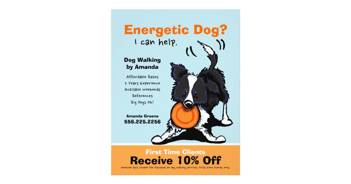 dog walker walking ad coupon border collie flyer. Black Bedroom Furniture Sets. Home Design Ideas