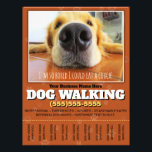 """Dog Walking Custom Flyer<br><div class=""""desc"""">Fully customizable Dog Walking Tearsheet Flyer to promote and advertise your dog walking service. Eye-catching and professional. Features closeup photo of golden labrador lying a a floor, bored and wishing he could go outside for a walk and play. Hang in local businesses, libraries, schools. See matching items. Makes a practical...</div>"""