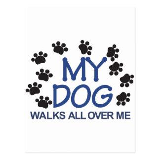 Dog Walks Paws Postcard