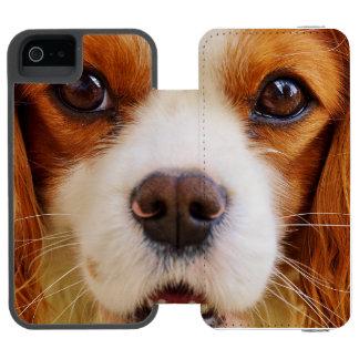 dog wallet case for iPhone SE/5/5s