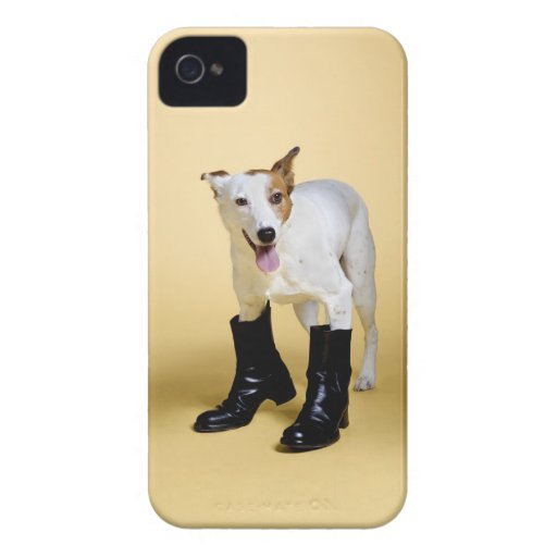 Dog wearing boots Case-Mate iPhone 4 case