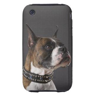 Dog wearing collar, looking away iPhone 3 tough case