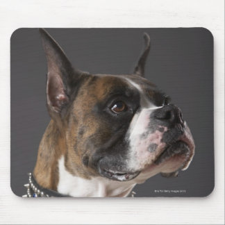 Dog wearing collar, looking away mouse pad