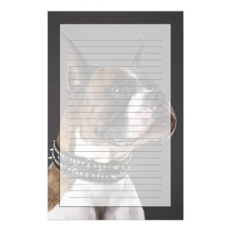 Dog wearing collar, looking away stationery