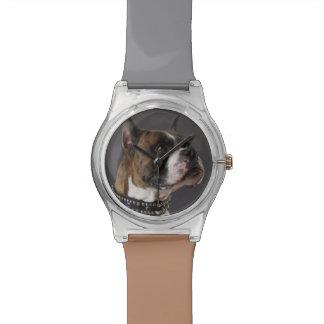 Dog wearing collar, looking away wrist watch