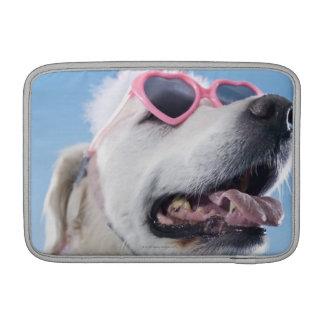Dog wearing heart shaped classes and tu-tu sleeve for MacBook air