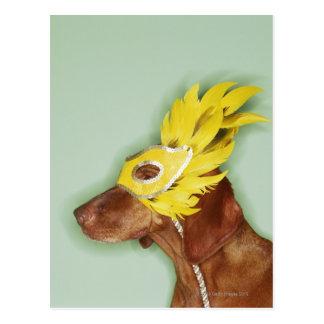 Dog wearing mask postcard