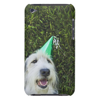 Dog wearing party hat barely there iPod cover