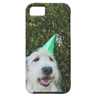 Dog wearing party hat iPhone SE/5/5s case