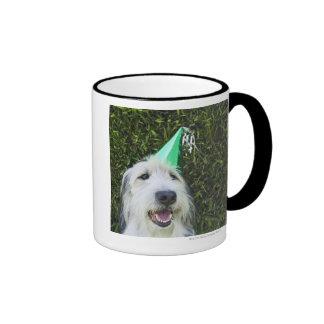 Dog wearing party hat ringer mug