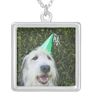 Dog wearing party hat silver plated necklace
