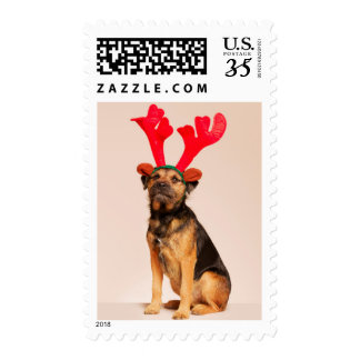 Dog Wearing Red Antlers Postage Stamps