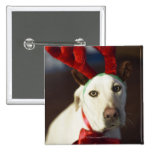 Dog wearing reindeer antlers 2 inch square button