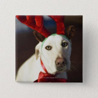 Dog wearing reindeer antlers button