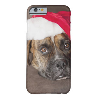 Dog wearing Santa hat Barely There iPhone 6 Case