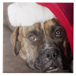 Dog wearing Santa hat Ceramic Tile