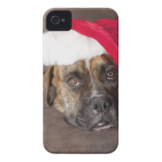 Dog wearing Santa hat iPhone 4 Case