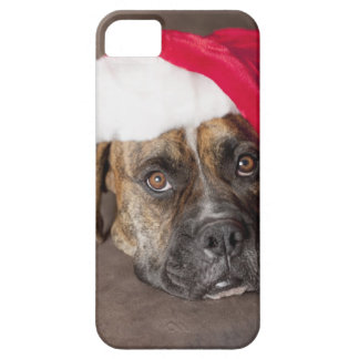 Dog wearing Santa hat iPhone SE/5/5s Case