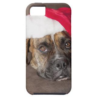 Dog wearing Santa hat iPhone SE/5/5s Case