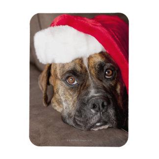 Dog wearing Santa hat Magnet
