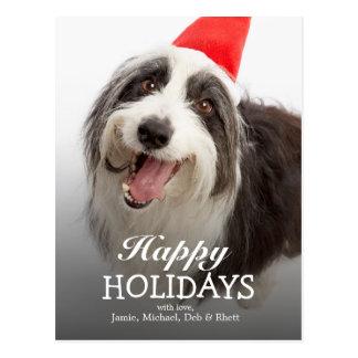 Dog wearing Santa hat Postcard