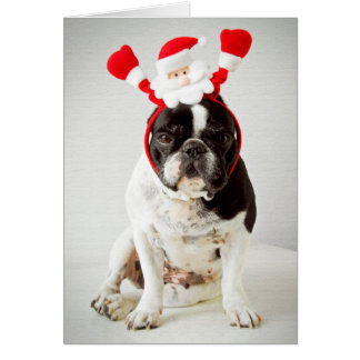 Dog wearing santa headband greeting card