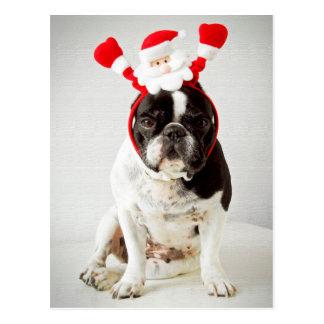 Dog wearing santa headband postcard
