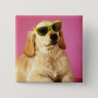 Dog wearing sunglasses 2 button