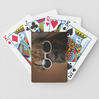 Dog wearing sunglasses bicycle playing cards
