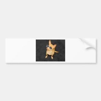 Dog wearing sunglasses bumper stickers