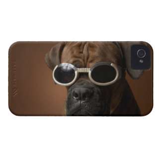 Dog wearing sunglasses iPhone 4 Case-Mate case
