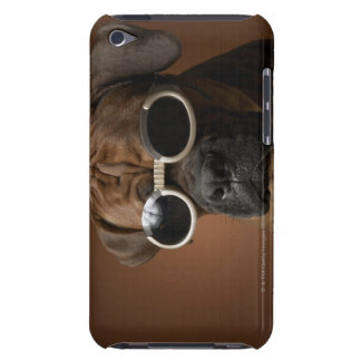 Dog wearing sunglasses iPod Case-Mate case