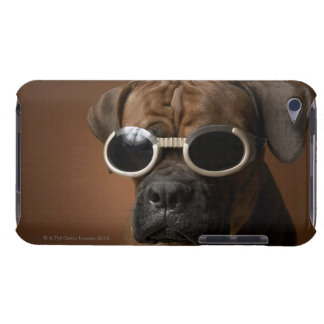 Dog wearing sunglasses iPod touch cover