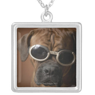 Dog wearing sunglasses silver plated necklace