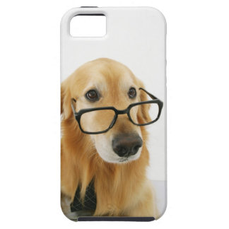 Dog wearing  tie and glasses sitting on chair in iPhone SE/5/5s case