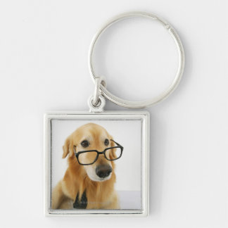 Dog wearing  tie and glasses sitting on chair in key chains