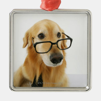 Dog wearing  tie and glasses sitting on chair in metal ornament