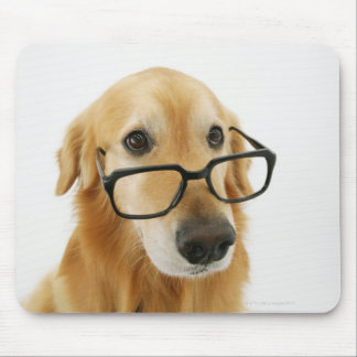 Dog wearing  tie and glasses sitting on chair in mouse pad