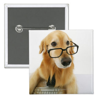 Dog wearing  tie and glasses sitting on chair in pinback button