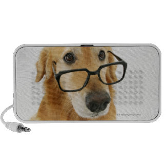 Dog wearing  tie and glasses sitting on chair in laptop speakers
